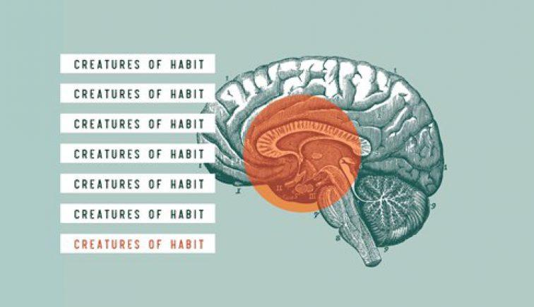 Creatures of Habit (1)