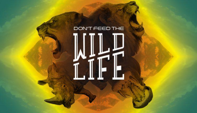 Don't Feed the Wildlife Sermon Series Idea