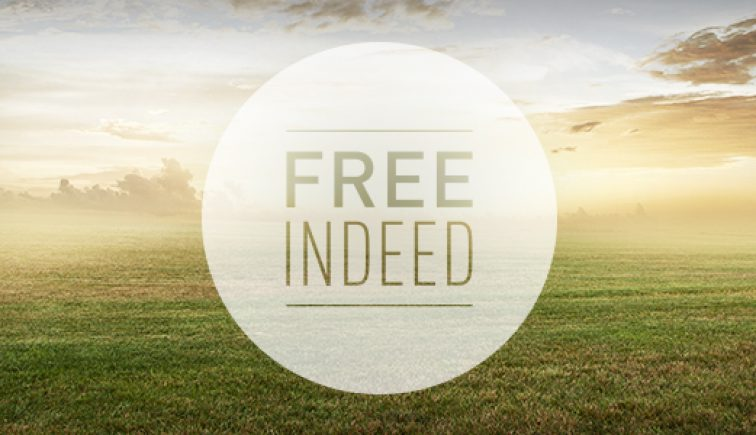 Free Indeed Sermon Series Idea
