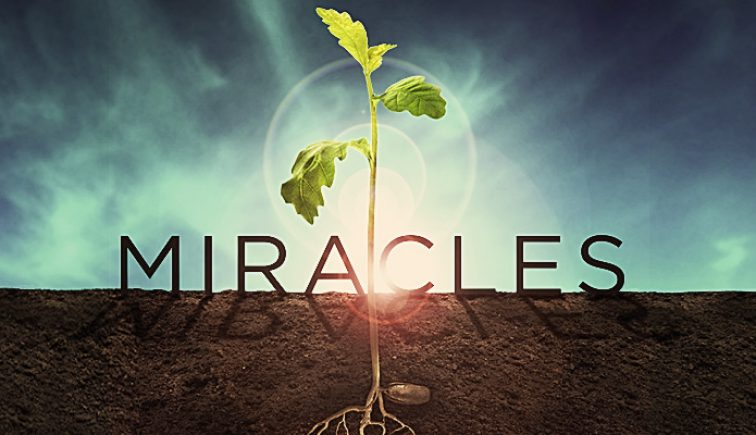 Miracles Series Idea