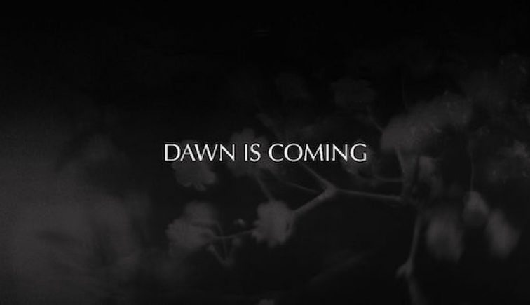 dawniscoming